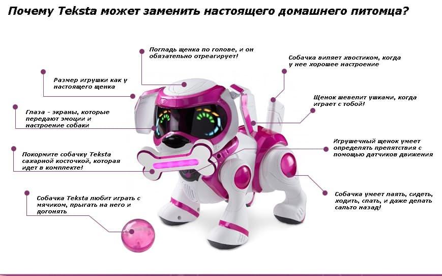 Собака Текста