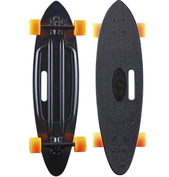 Fsihboard31