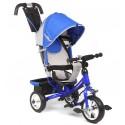 Детский трехколесный велосипед Capella Action Trike II